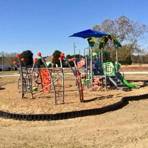 Play Space with a Modern Look - Wilson's Mills, NC gallery thumbnail