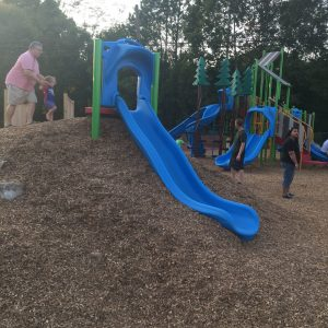 Playground with Hillside Slides - Alta Vista, VA gallery thumbnail